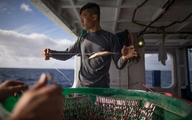 a man stands on a fishing vessel, looking to his left off the boat while holding a bait fish