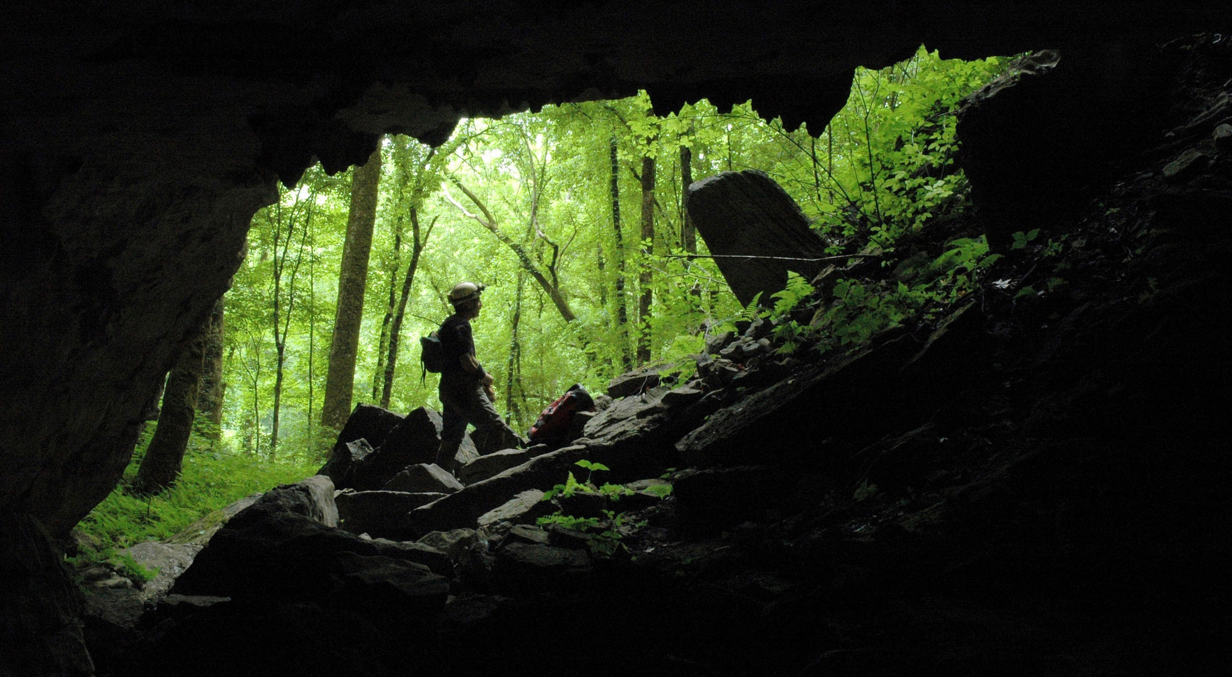 View from a Tennessee cave.