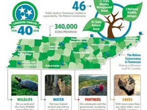 An infographic depicts 40 years of conservation in TN.