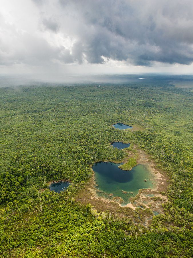 aerial view of tropical forest with blue pools