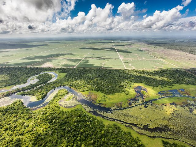 An aerial view of where farms meet the Maya Forest in Belize.