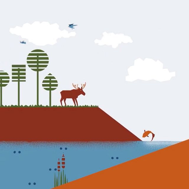 Illustration of trees, water and soil along with grazing cattle, fish and moose.