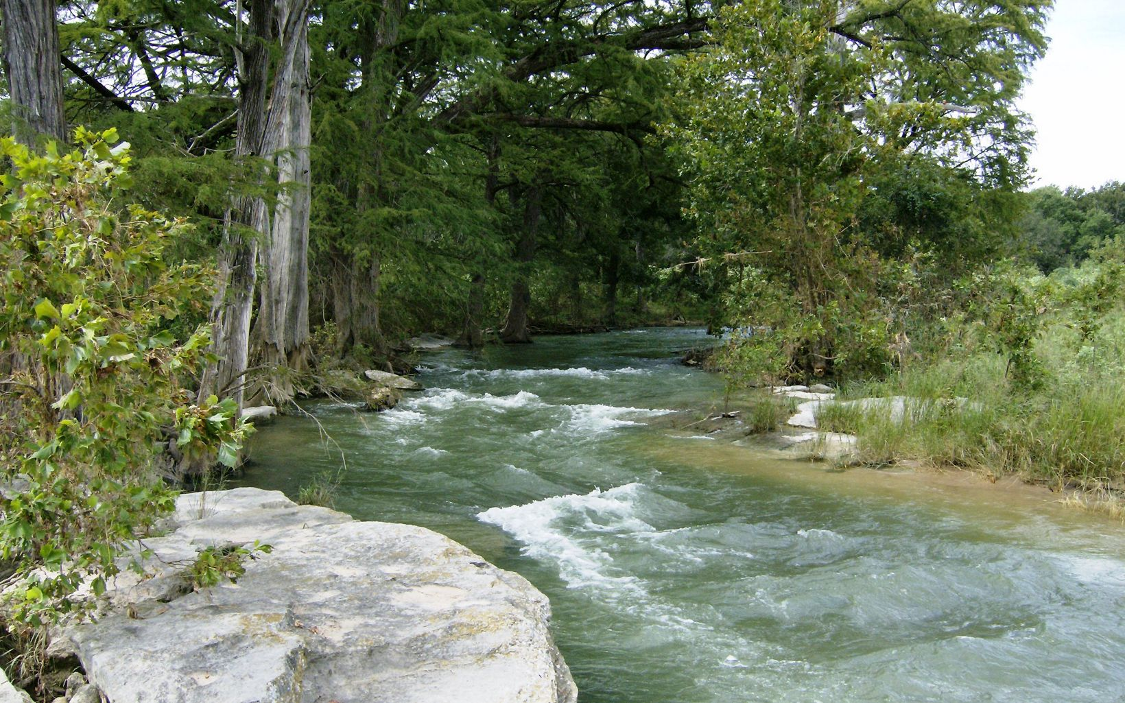 Fast-flowing water in the Pedernales River, Texas with trees on one bank and sand and grassy vegetation on the other.