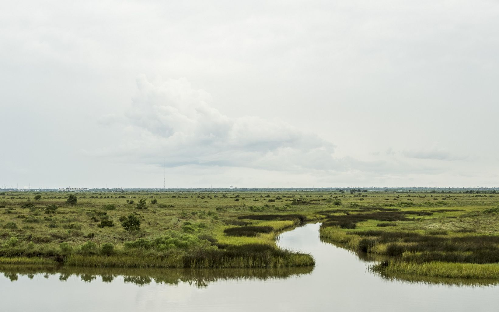 View of coastal prairie landscape, including green grasslands and water.