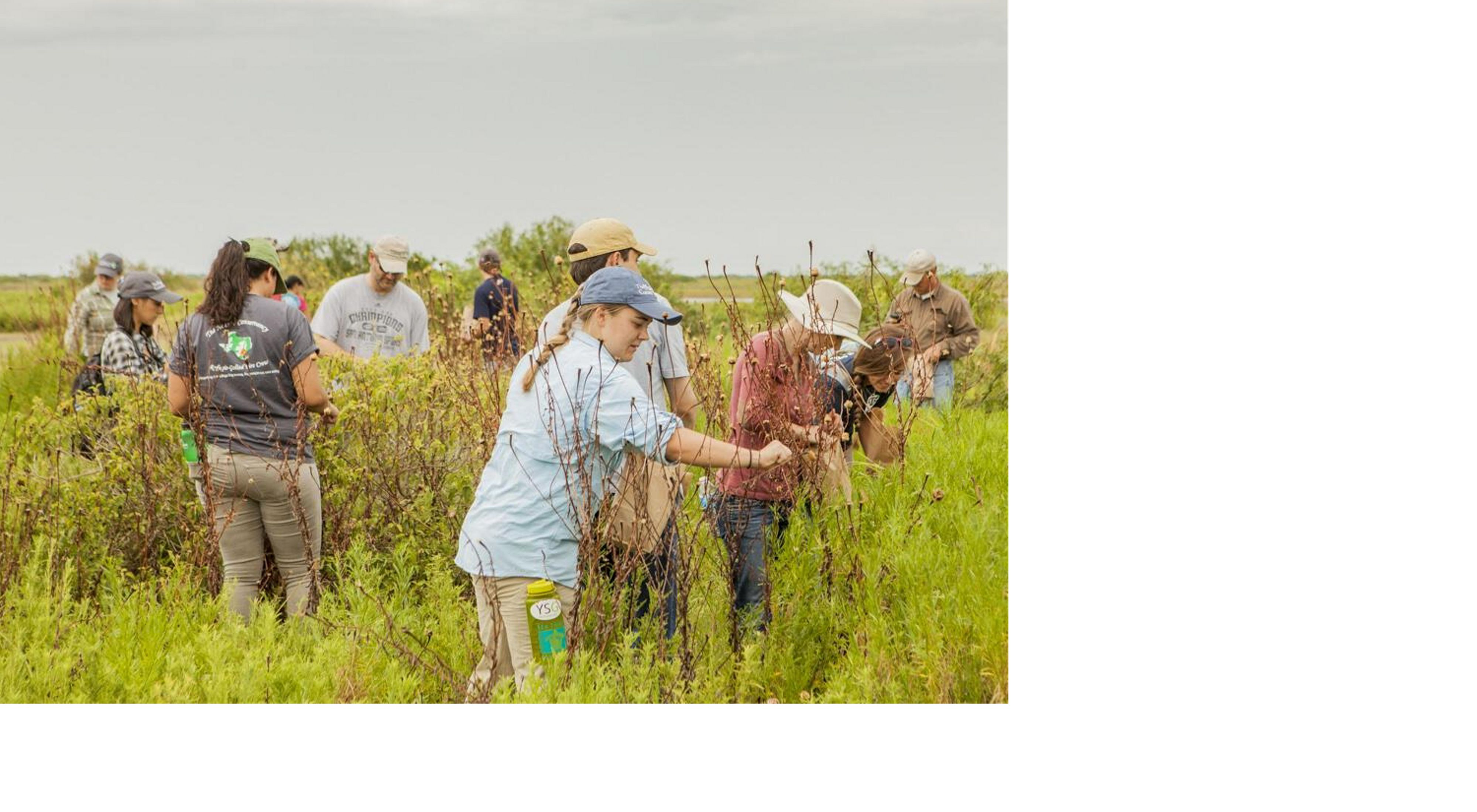 A group of youth sprinkle seeds on a grassy prairie.