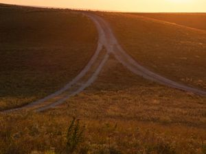 Sun sets on open prairie with two trails merging on a hilltop.