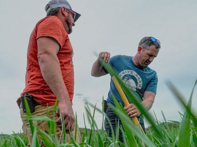 Matt Tentis working the soil with a shovel as his brother Seth stands on.