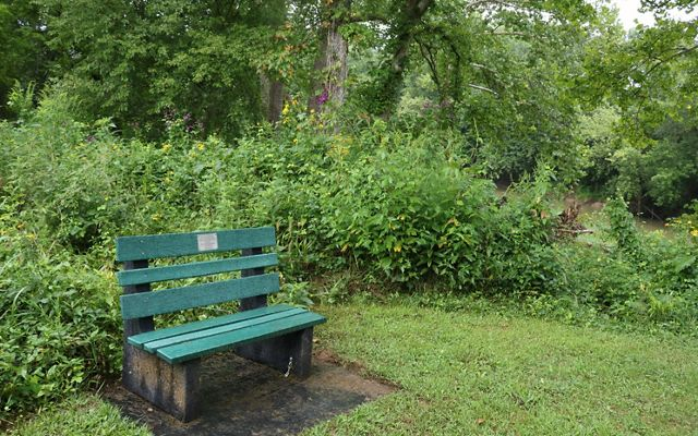Donated Bench