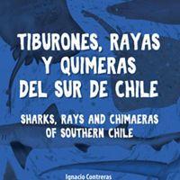 Esta nueva y completa guía de campo te invita a conocer cerca de la mitad de los peces cartilaginosos de Chile.