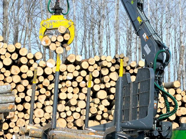 Timber harvest in winter.