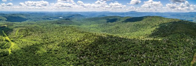 Photo of Vermont mountains in summer.
