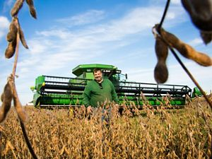 A man in a green sweatshirt stands in front of a large green combine in a soybean field.