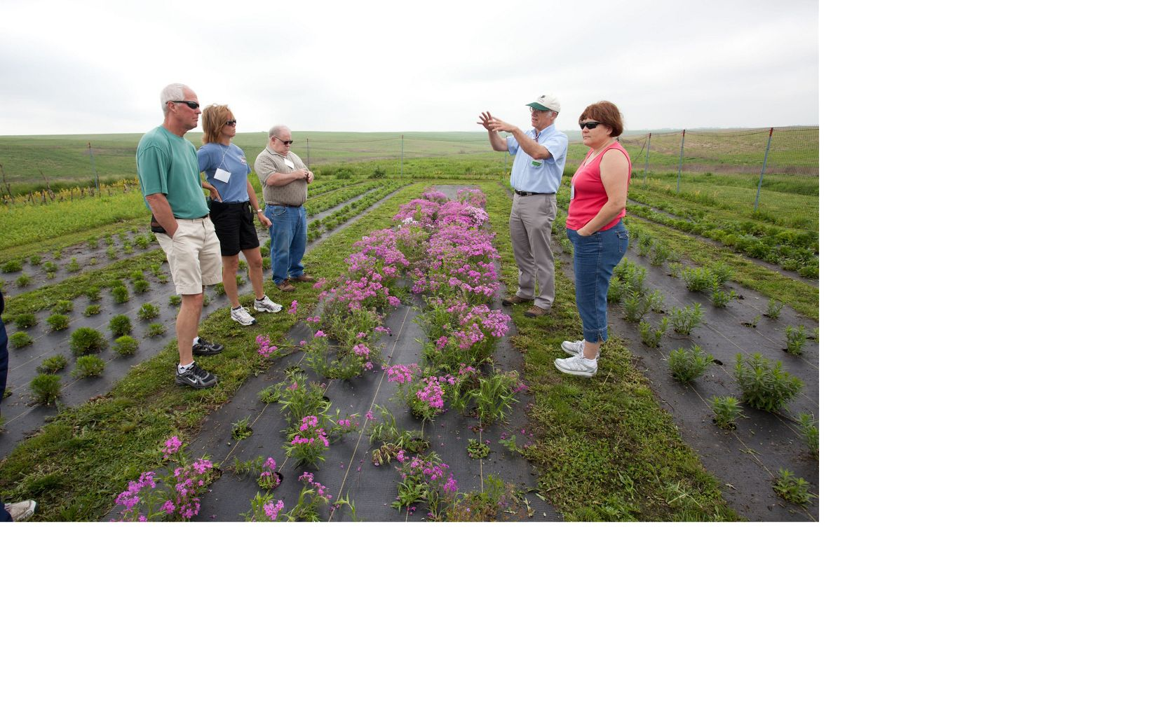 A group of people gather around a forb garden on the prairie