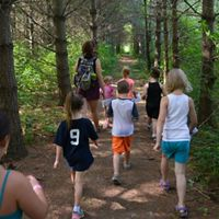 Several kids running down a corridor lined by tall trees.