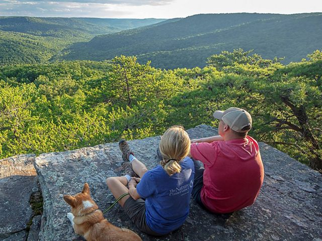Two people and a dog sit on a rock overlooking a valley.