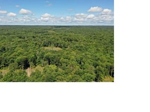 Aerial view of Tug Hill forests.