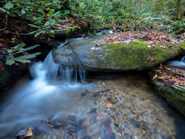 Water flows over a mossy rock.