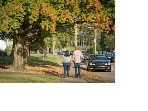 A couple walk down a tree-lined street.