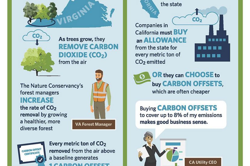 Carbon offset infographic