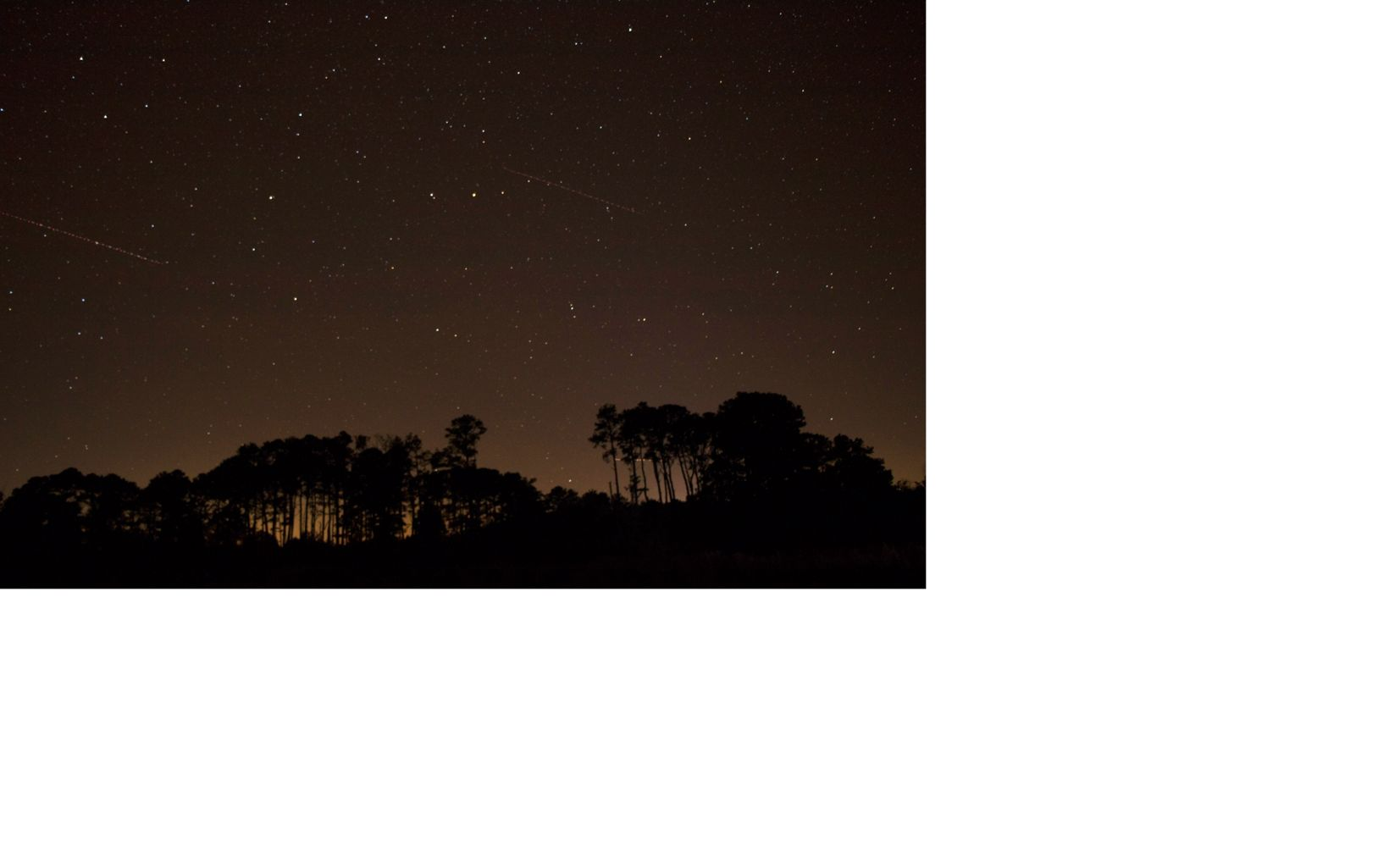 Stars in a dark night sky over Brownsville Preserve.