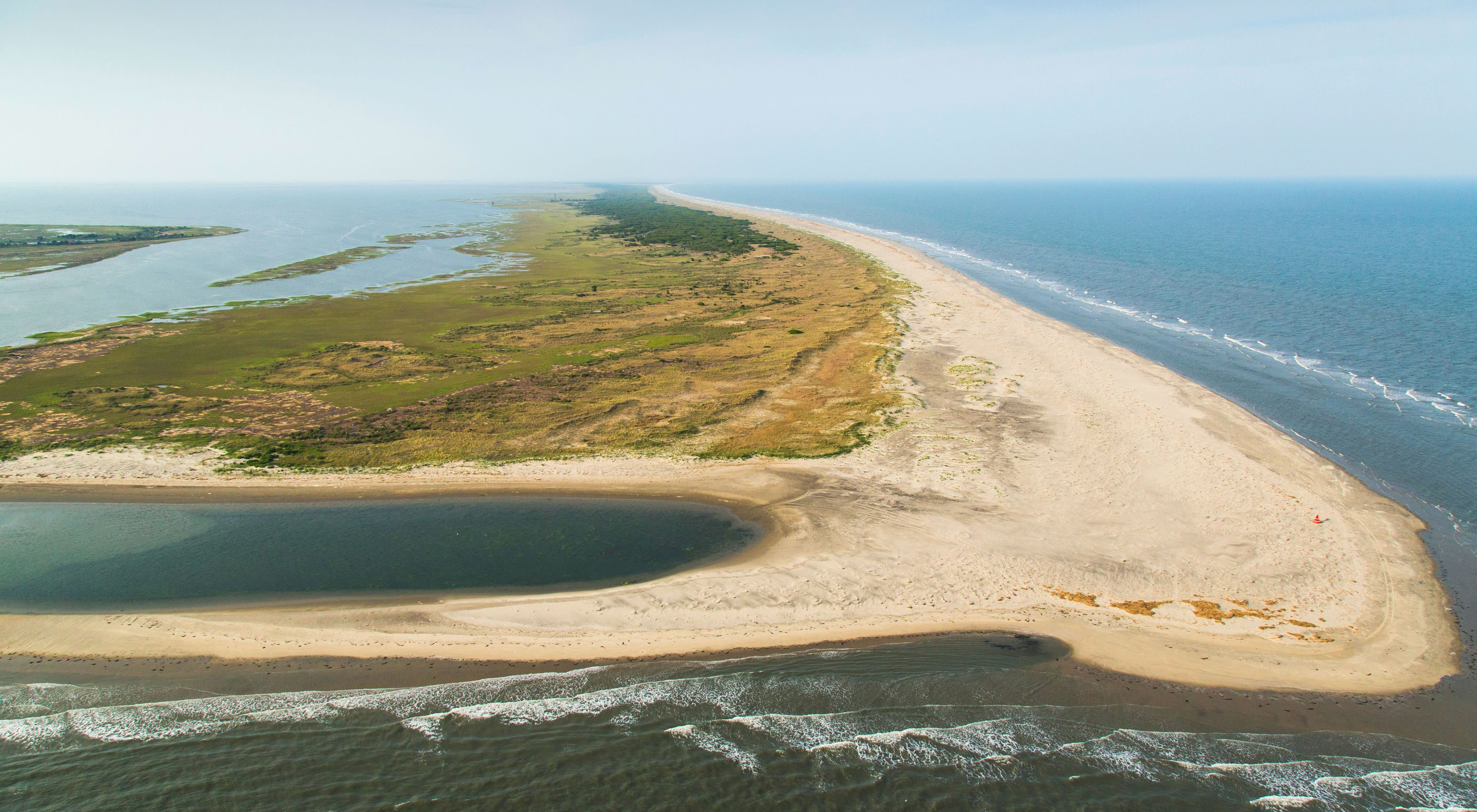 Aerial view of broad stretch of beach on Hog Island, Virginia