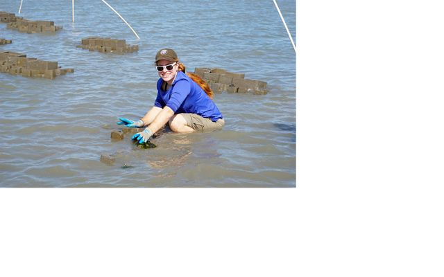 Volunteer Andi Clinton works on a foundation tier of oyster castles at Man and Boy Marsh.