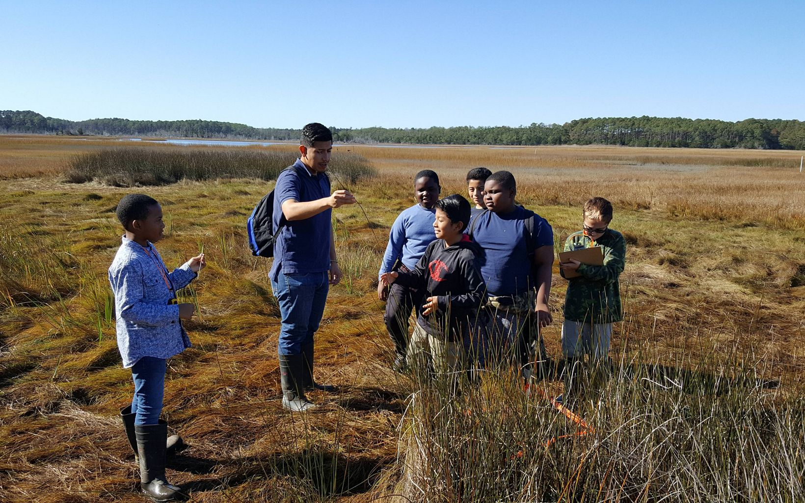 A parent chaperone leads a group a boys through the seaside marsh grass.