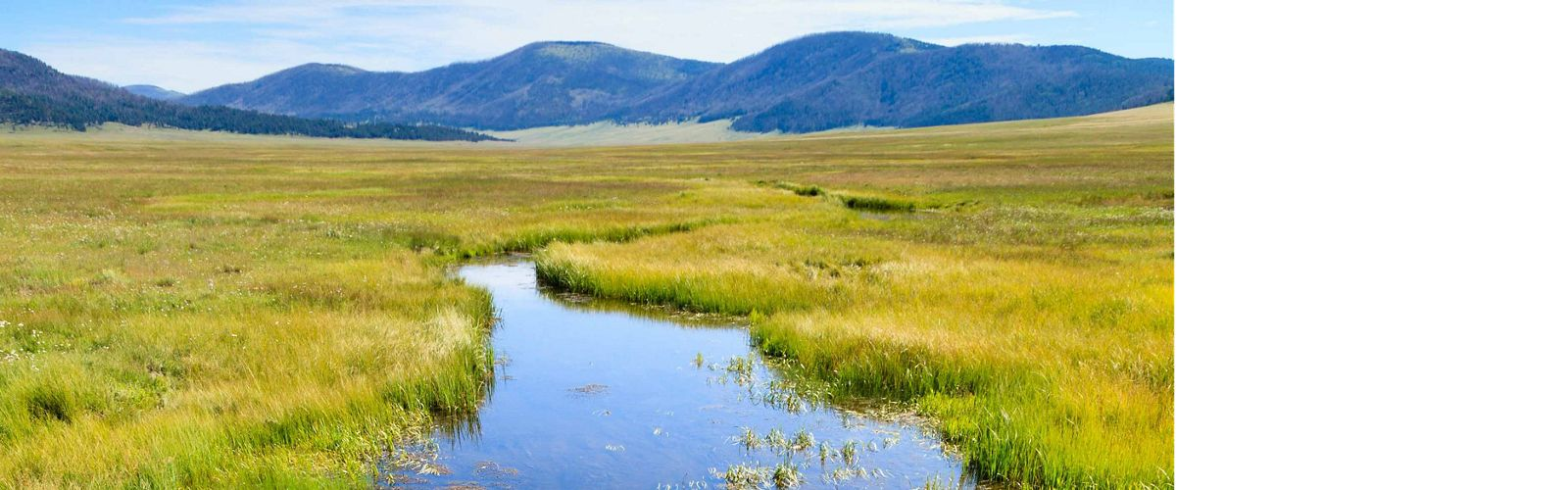 New Mexico's Rio Grande and its tributaries supply water to more than half of New Mexico's population.