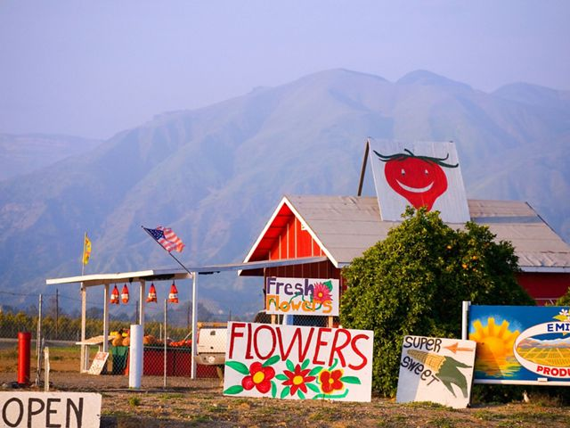 A farm stand in Ventura County.