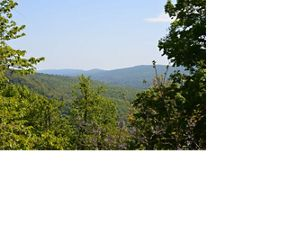 A forested valley stretches for miles.