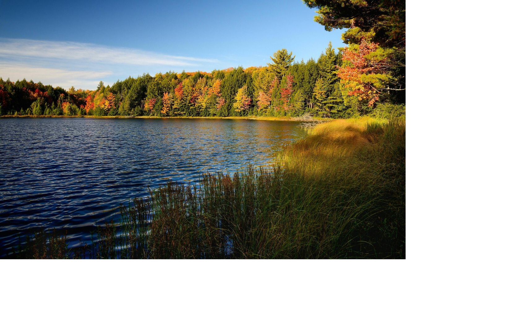 Red, orange and yellow fall colors mix with the green of the conifer trees that fringe a blue lake with wetlands in the foreground and blue sky overhead.