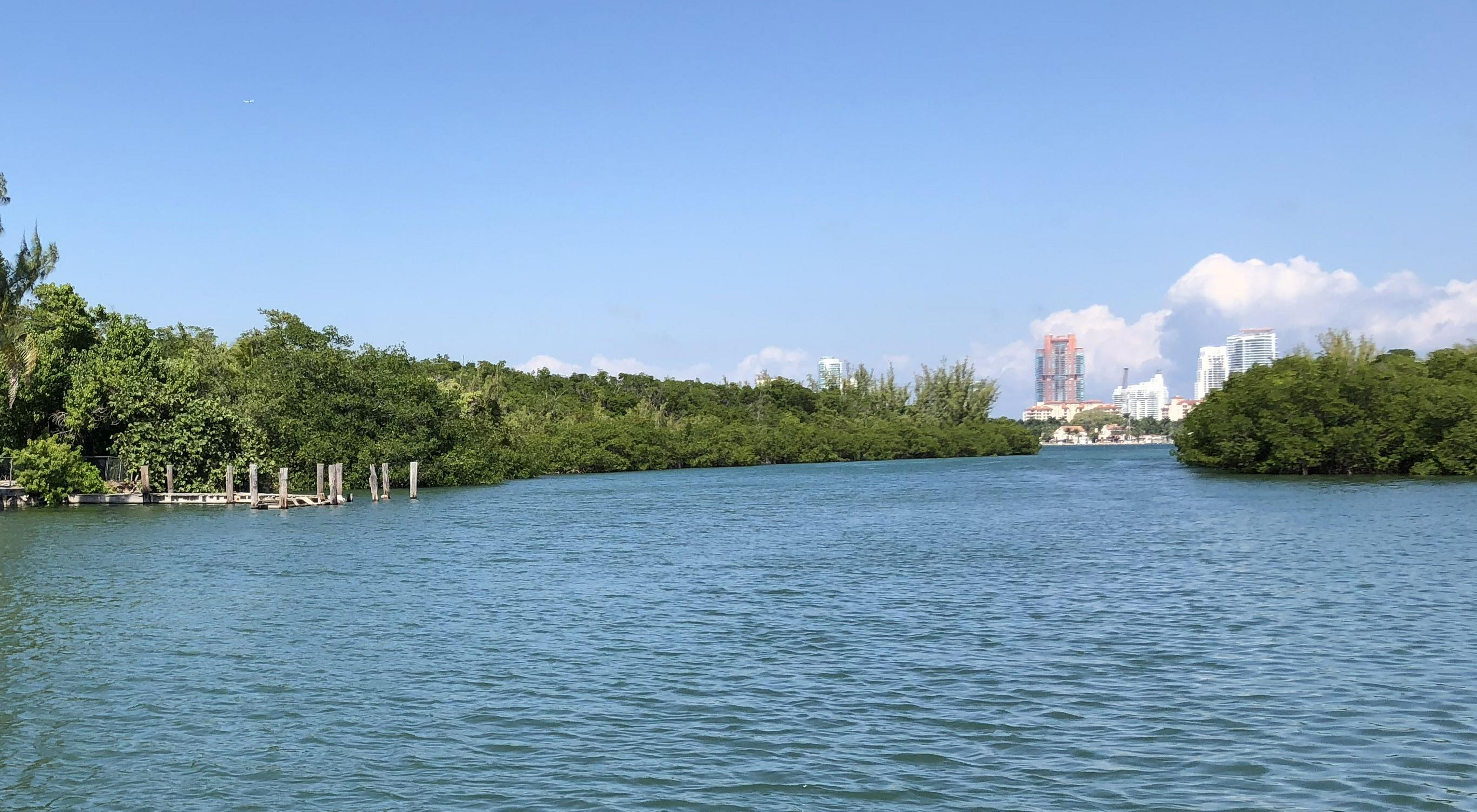 Shoreline of Virginia Key Beach with the Miami skyline in the distance.