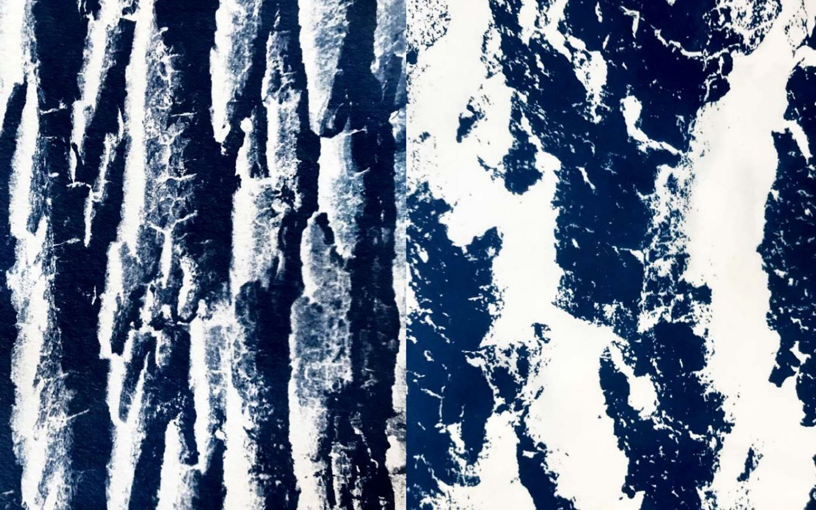 Excerpts from Winter Visual Journal