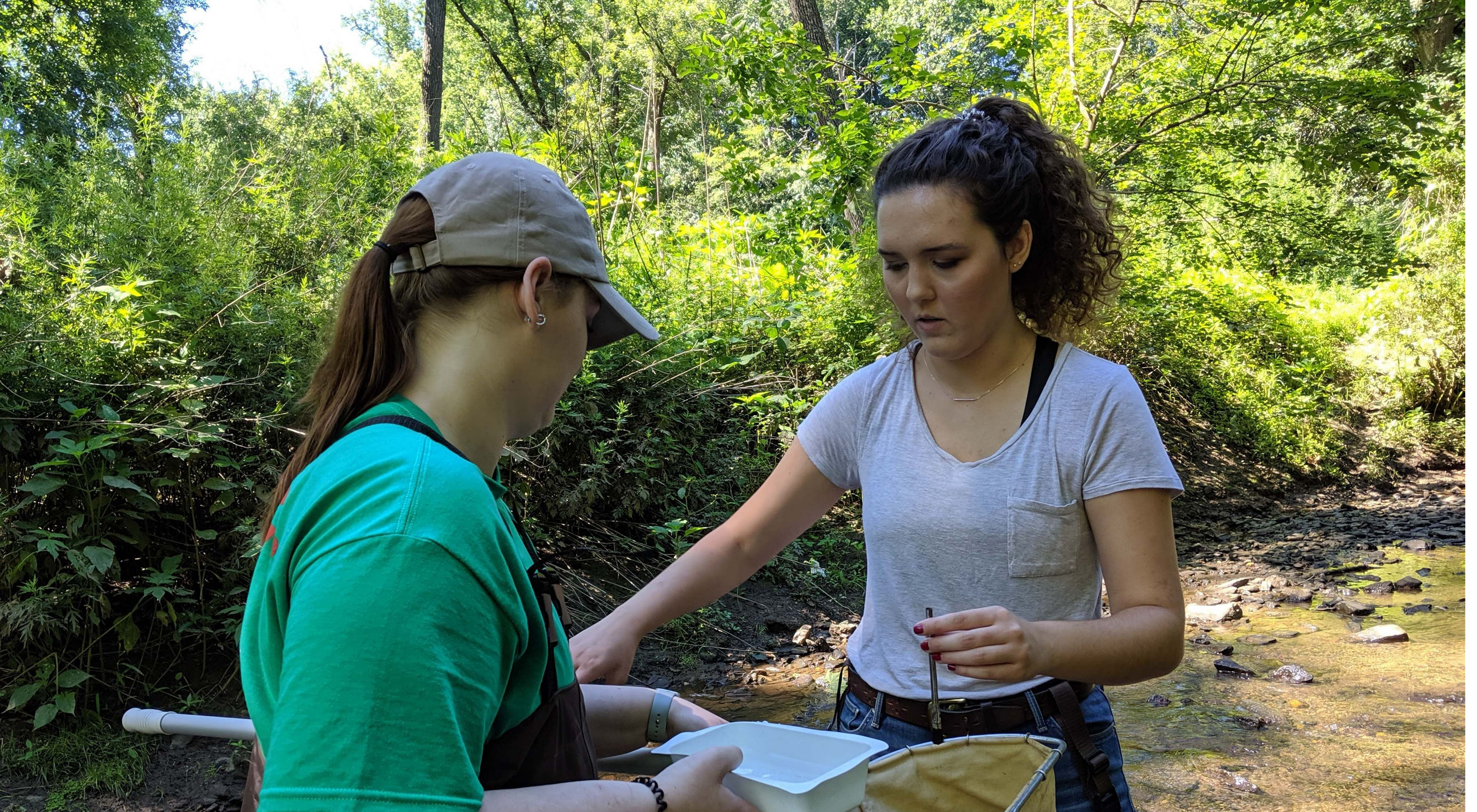 Viviana and a member of the Youth Conservation Corps collect macroinvertebrates from Beaver Run in First State National Historical Park.