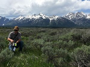 Researcher collecting samples for the Wildflower Watch project.