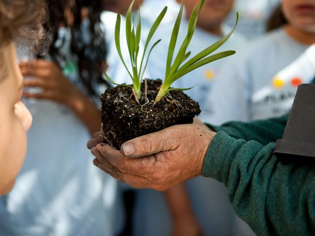 A person holds a plant ready to be planted in their bare hands.
