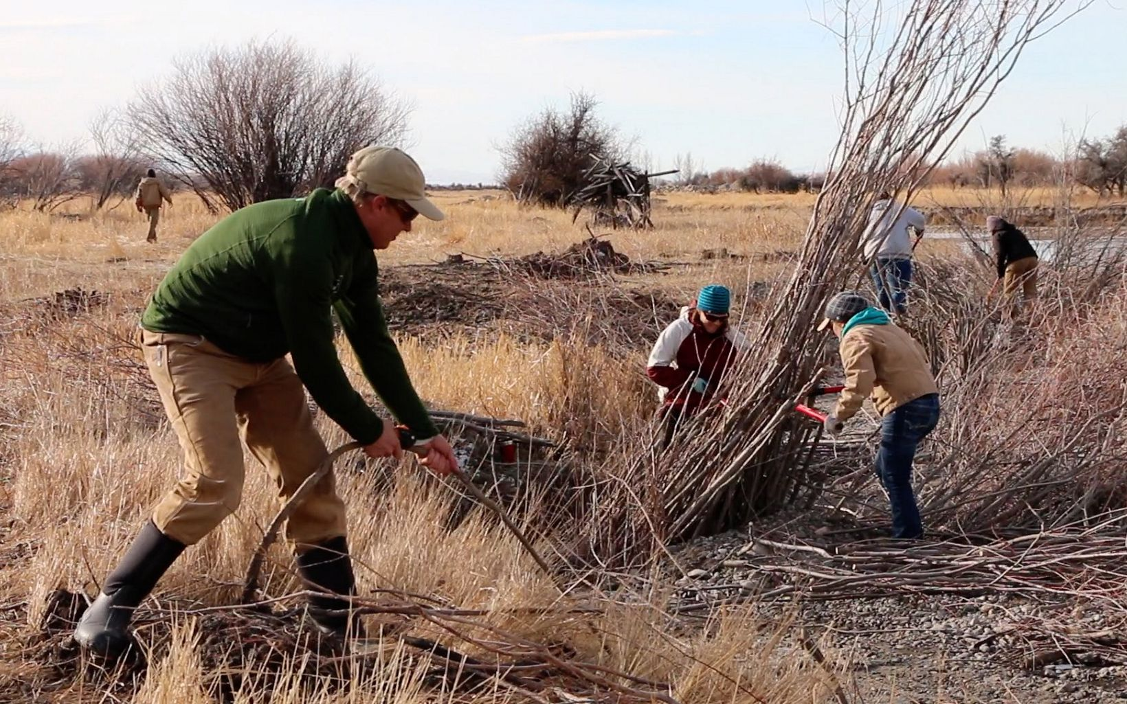 Volunteers harvested and planted thousands of willows to stabilize the banks, cool water and create wildlife habitat.