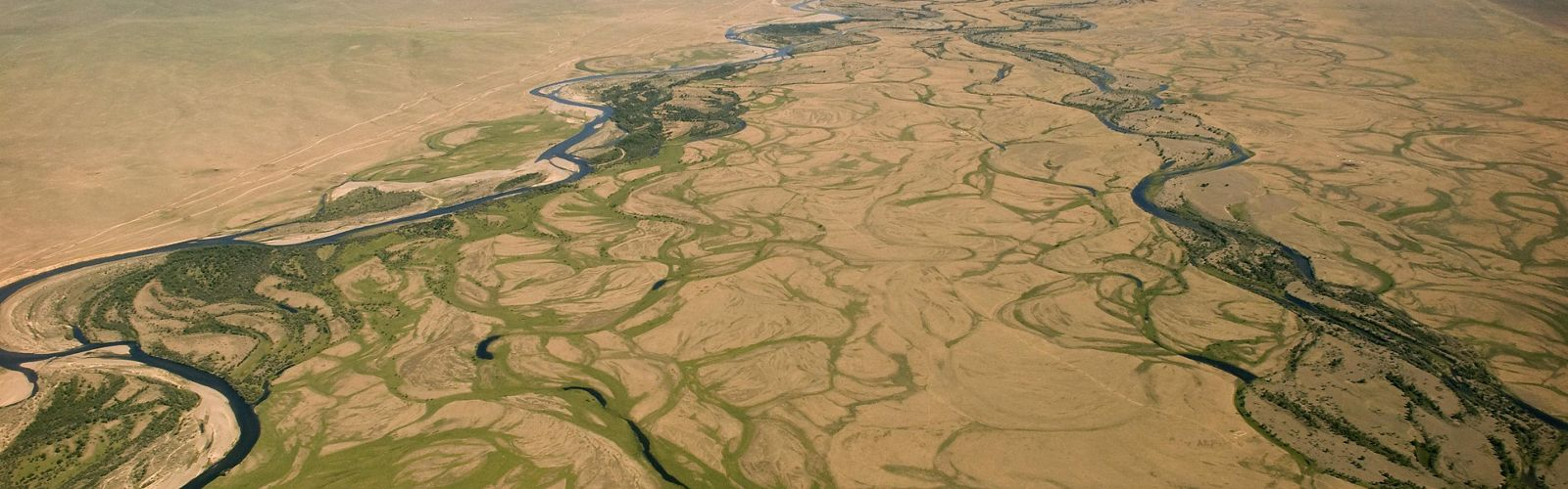 aerial view of brown and green grassland with meandering rivers