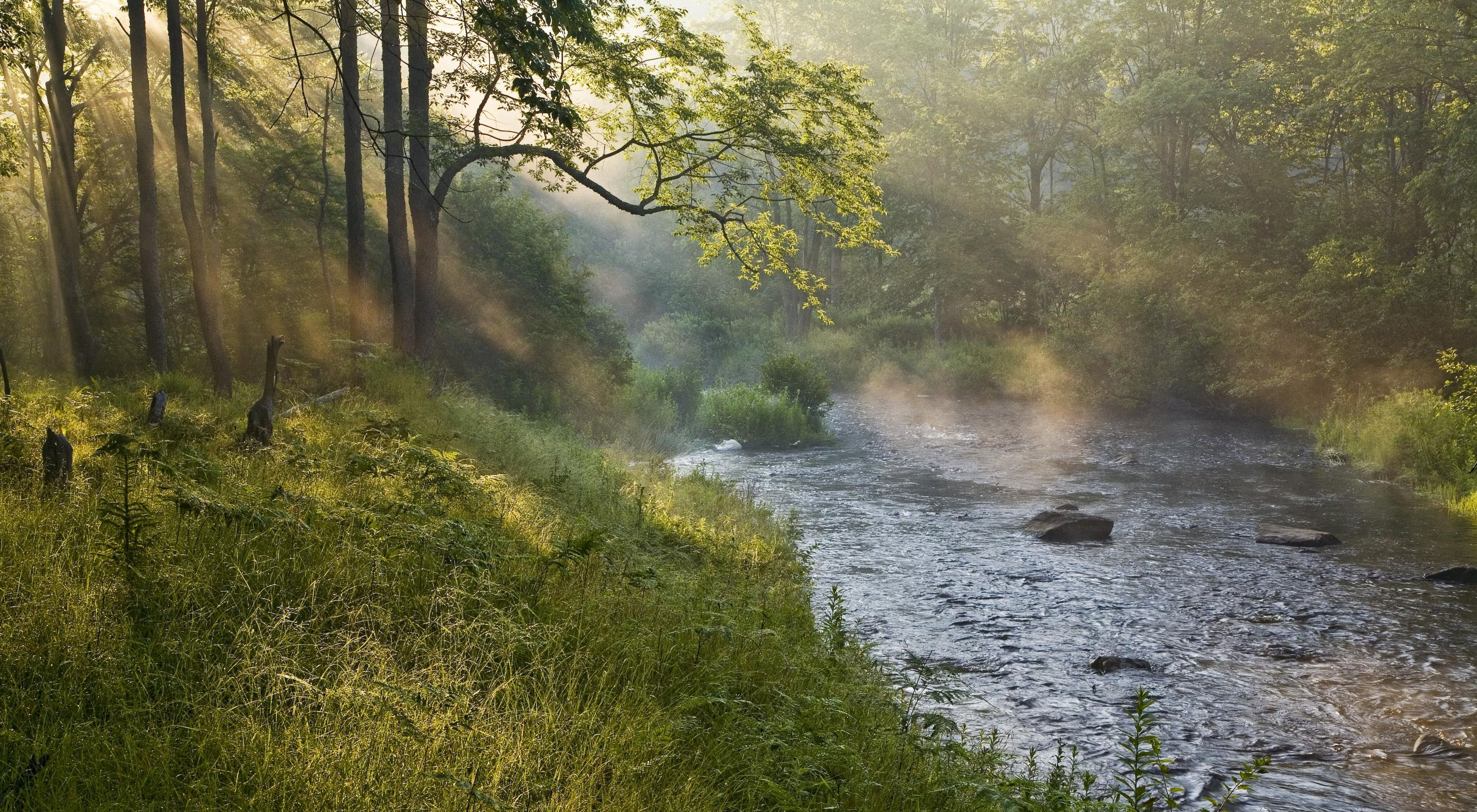 Photo of a river in early-morning fog.