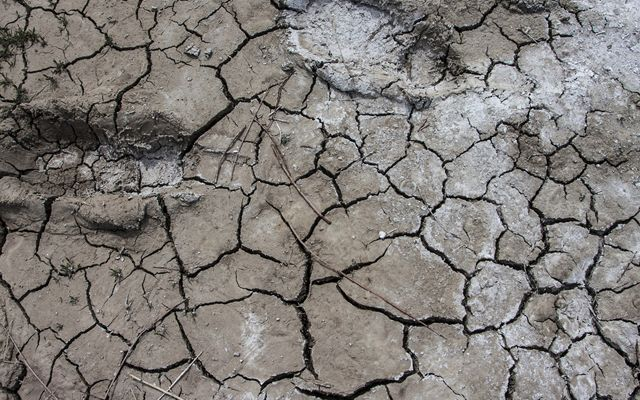 A close up picture of dry, cracked ground.