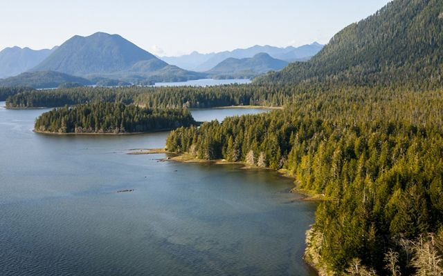 Aerial view of Clayoquot Sound