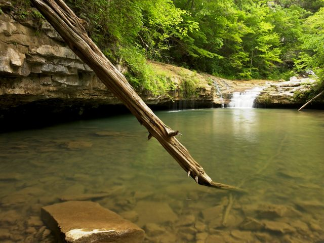 A large stick touches down into a creek.