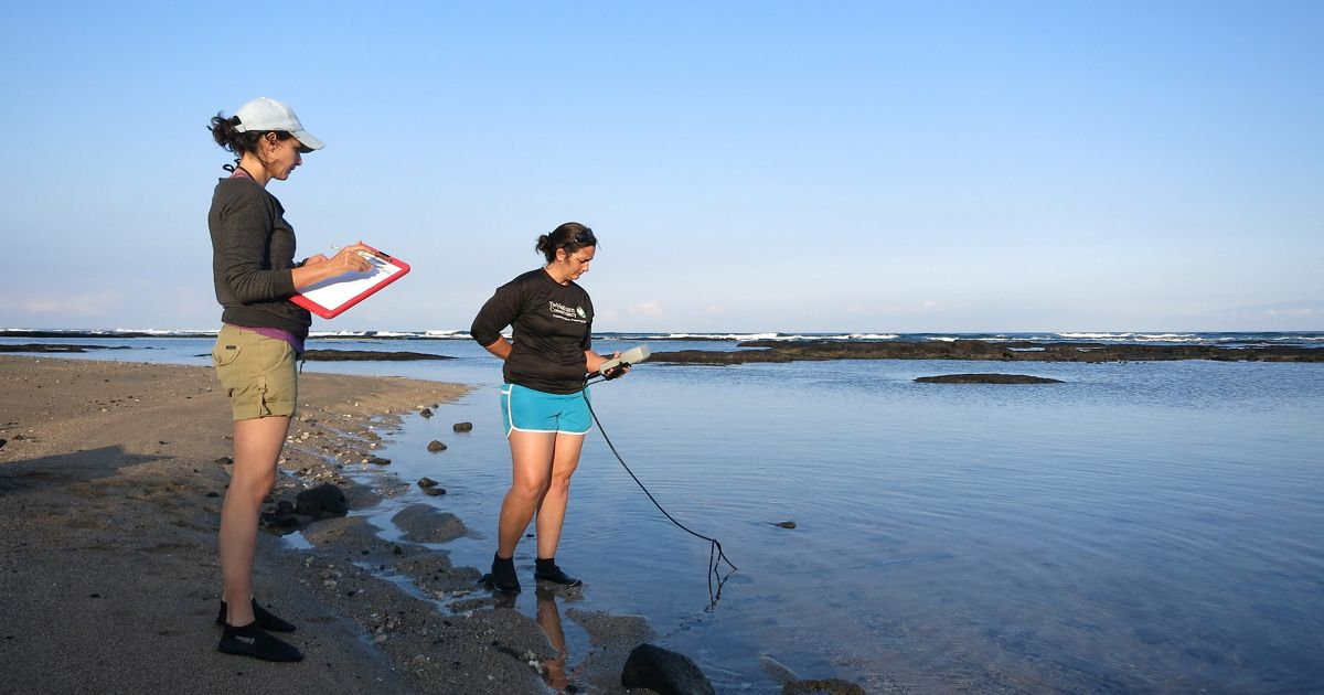 TNC staff and trained volunteers conduct monthly water quality monitoring at Puako in Hawaii.