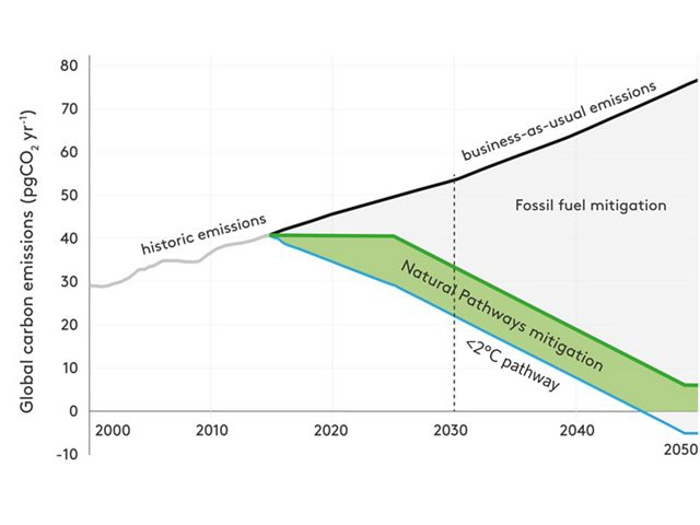 Infographic - Contribution of natural climate solutions (NCS) to stabilizing warming below 2°C.