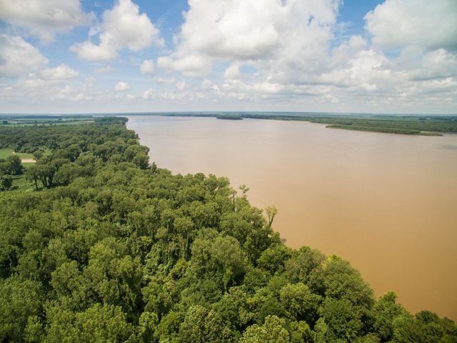 Mississippi River flanked by forest