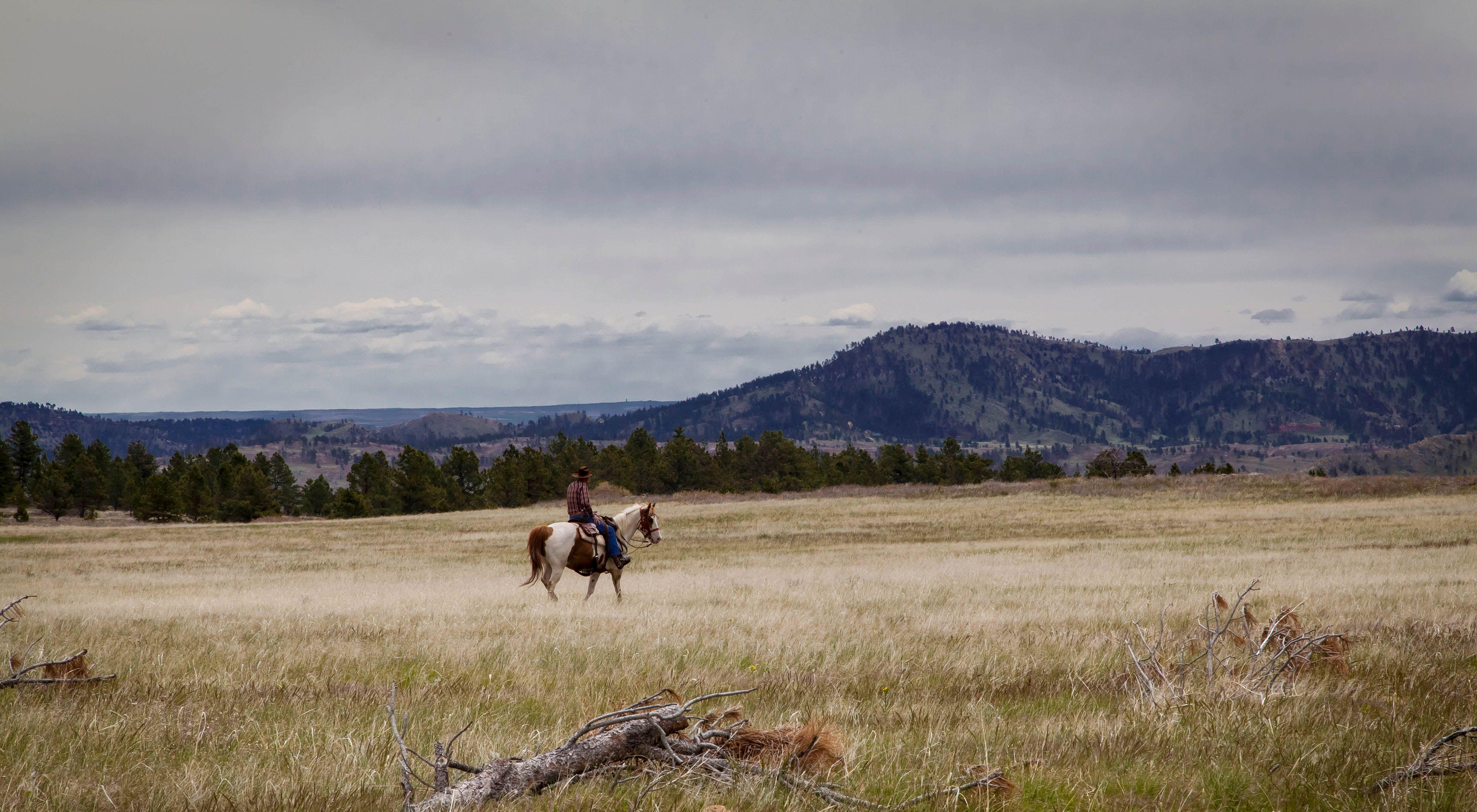 A person rides a horse through the Black Hills grasslands.