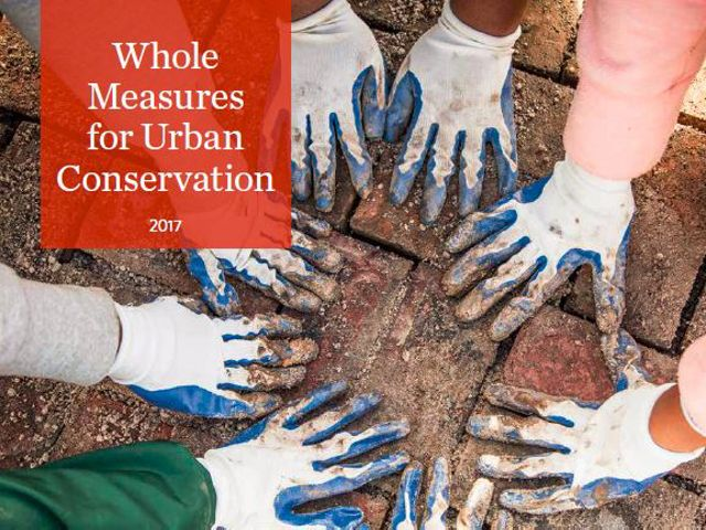 Whole Measures for Urban Conservation
