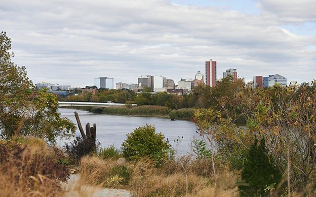 View across the river of the Wilmington, DE skyline. The foreground is filled with low shrubs and bushes.