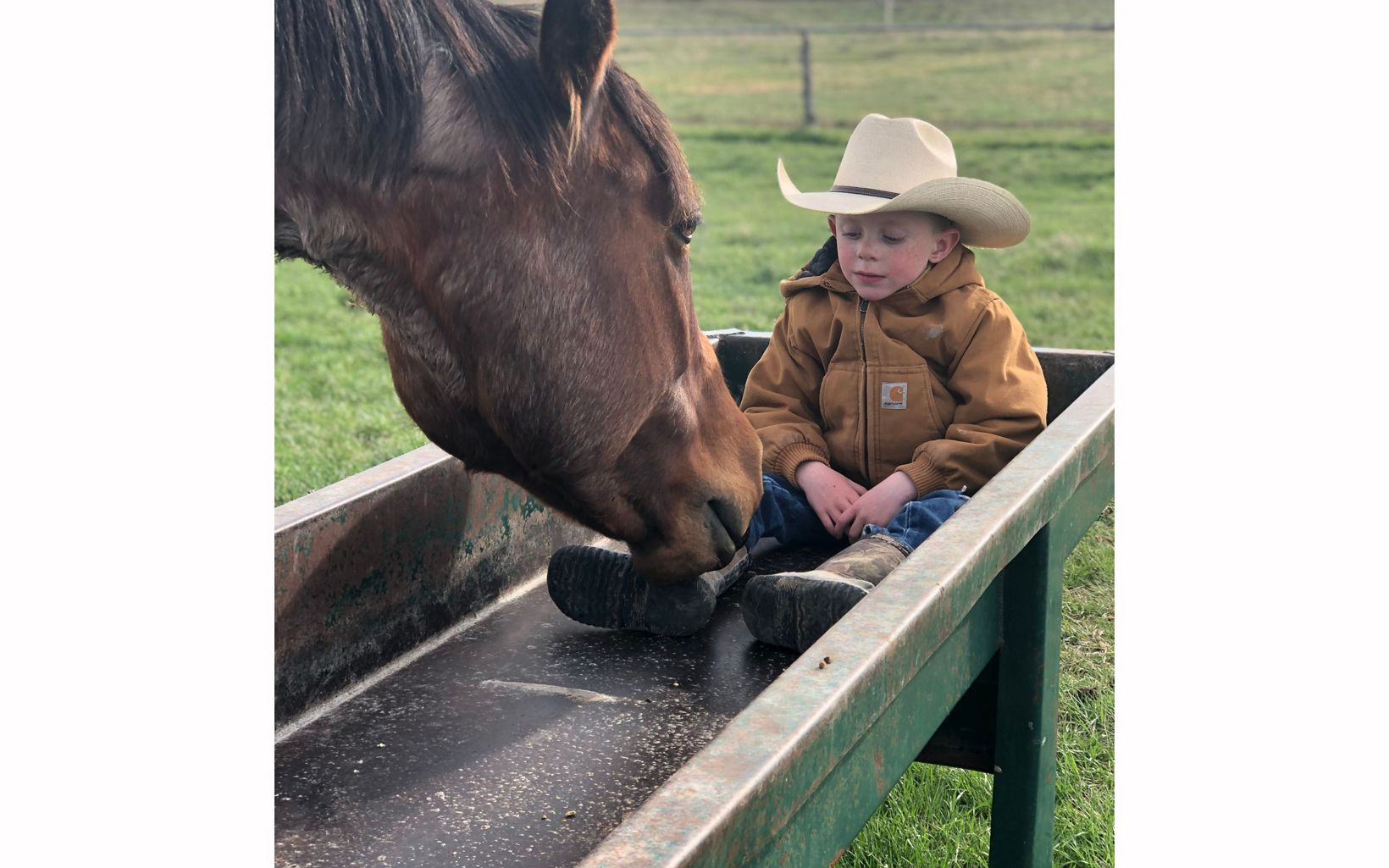 Boy in cowboy hat sits in trough next to horse.