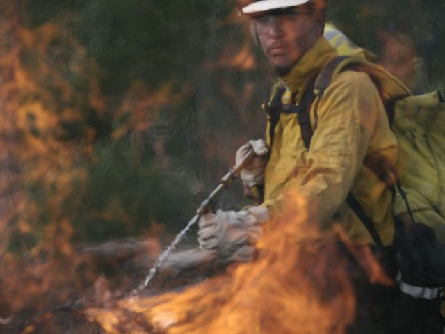 A man in a fire gear uses flame during a controlled burn